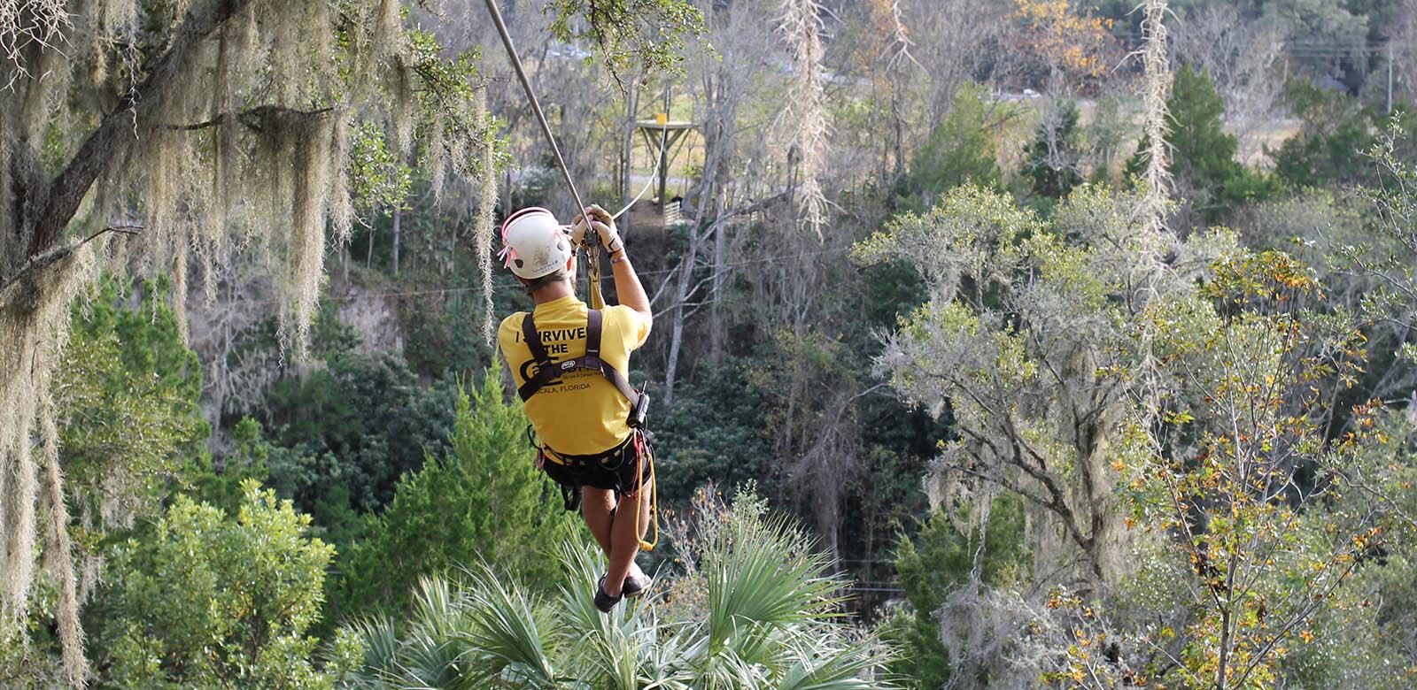 Canyon Zipline Tour Wilderness